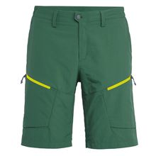 Salewa Puez Dry Green Myrtle Men's Shorts Lowest Price