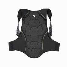 Dainese Back Protector Soft Flex Lowest Price